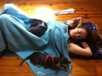 After Savasana snuggles and chew toys.